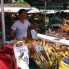 French Markets on the Ile De Re